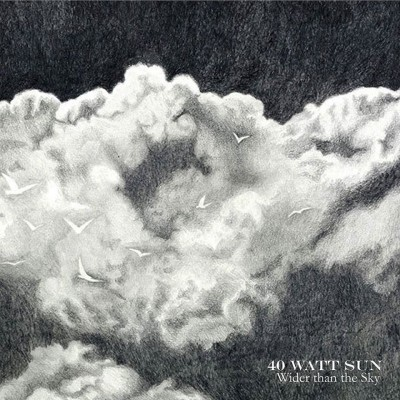 40-watt-sun-wider-than-the-sky-2lp