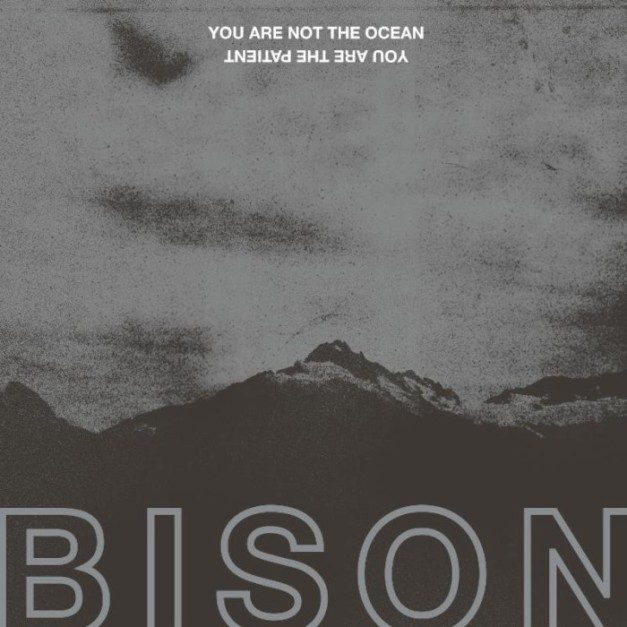 bison-you-are-not-the-ocean-you-are-the-patient