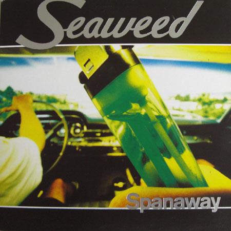 seaweedGslv