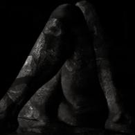 Fawn Limbs - Thrum artwork